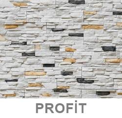 Profit-811-Olden